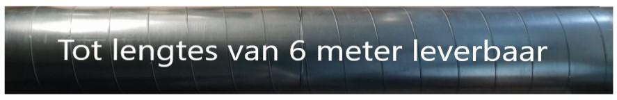 Spirobuizen tot 6 meter lengte